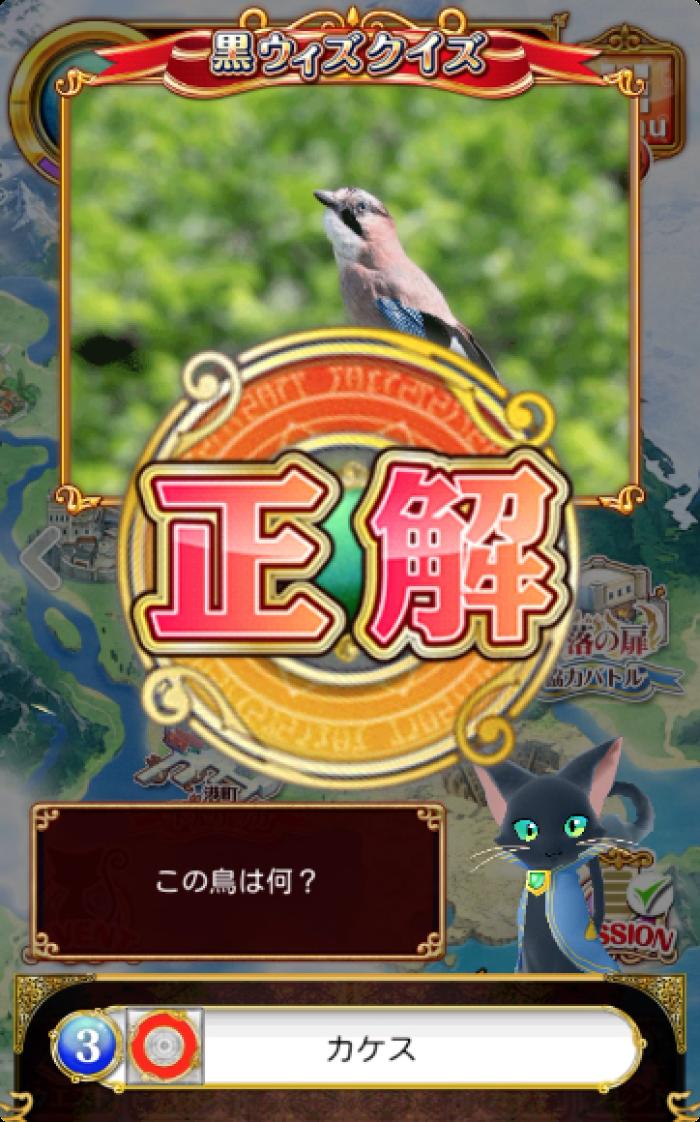 この鳥は何?-アオゲラ-オシドリ-カケス-シジュウカラ-黒ウィズクイズ
