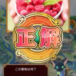 この果物は何?-コケモモ-ブルーベリー-ラズベリー-ヒルベリー-黒ウィズクイズ